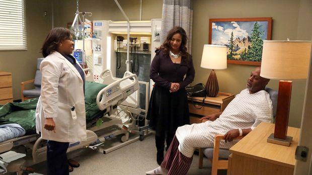 Bailey (Chandra Wilson, l.) ist über den Zustand von Dr. Webber (James Picken...