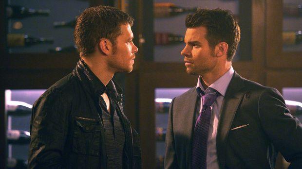 Werden Klaus (Joseph Morgan, l.) und Elijah (Daniel Gillies, r.) jemals erken...
