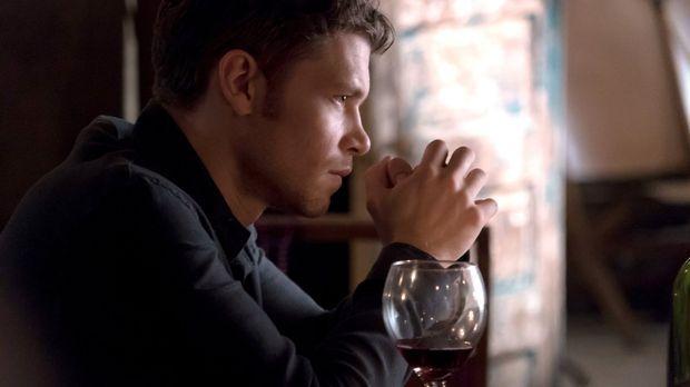 Nachdem Klaus (Joseph Morgan) erfahren hat, dass die angeblichen Kämpfer ihre...