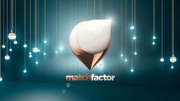Match Factor Logo petrol
