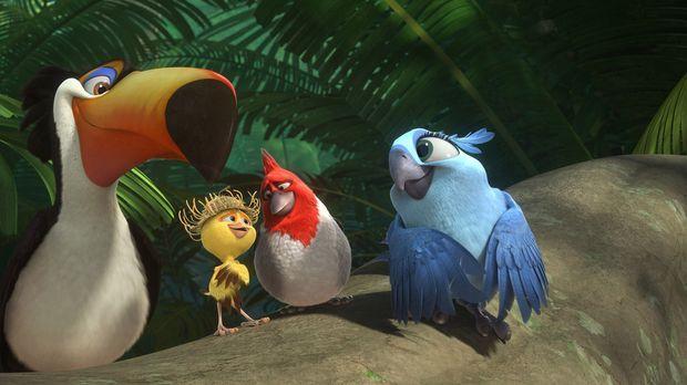 Sind absolut begeistert von der verlassenen Natur in den Regenwäldern des Ama...