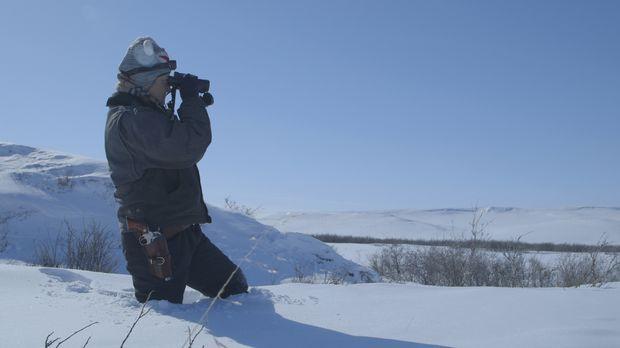 Jetzt bloß nicht die Geduld verlieren: Sue hält Ausschau nach Alpenschneehühn...