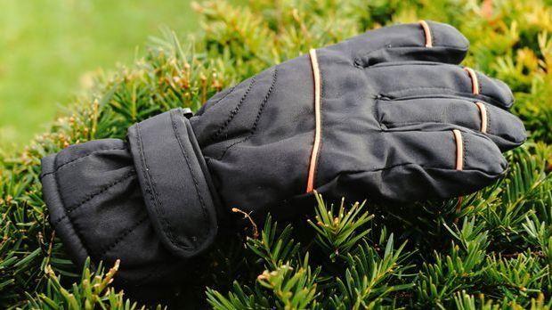 Hecke-Handschuh-Pixabay