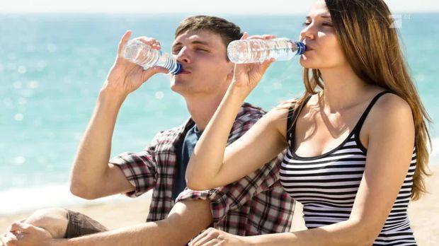 Taff - Taff - Sommerhitze: So Viel Wasser Solltet Ihr Wirklich Trinken
