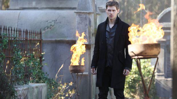 Eigentlich wollte Klaus (Joseph Morgan) Finn ein für alle Mal aus dem Spiel n...