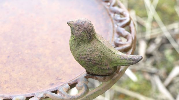 Vogeltränke-pixabay
