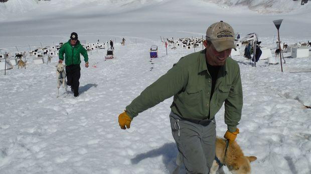 Mitten in der Wildnis Alaskas findet eines der härtesten Wettrennen der Welt...