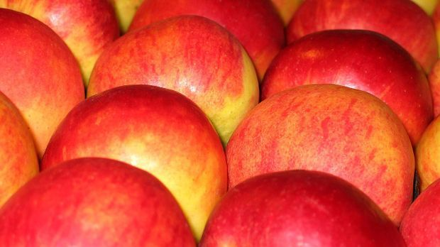 Äpfel für Apfelstrudel