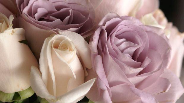 Blumenstrauß-pixabay