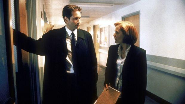 Scully (Gillian Anderson, r.) und Mulder (David Duchovny, l.) ermitteln an ei...