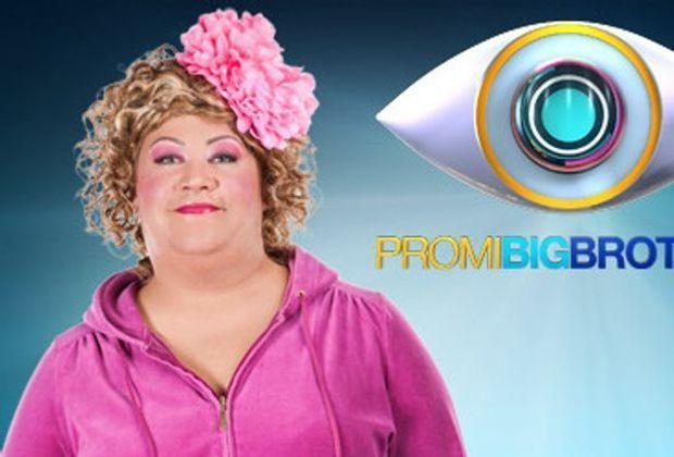 promi-big-brother-coll-1-620-349-SAT1