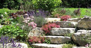 video: steingarten anlegen: anleitung - sat.1 ratgeber, Hause und Garten