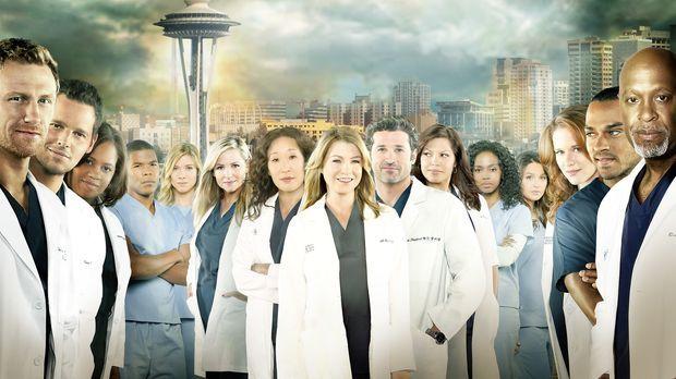 (10. Staffel) - Grey's Anatomy: Owen (Kevin McKidd), Alex (Justin Chambers),...