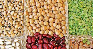 Hülsenfrüchte besitzen eine hohe Nährstoffdichte.