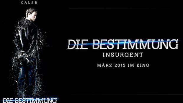 Die Bestimung - Insurgent