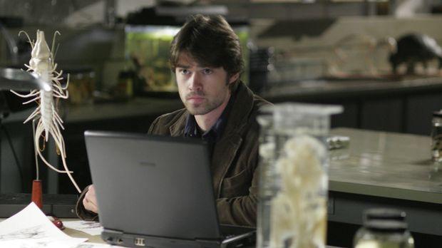 Luke Callahan (Corey Sevier) ist der Einzige, der noch dafür sorgen kann, das...