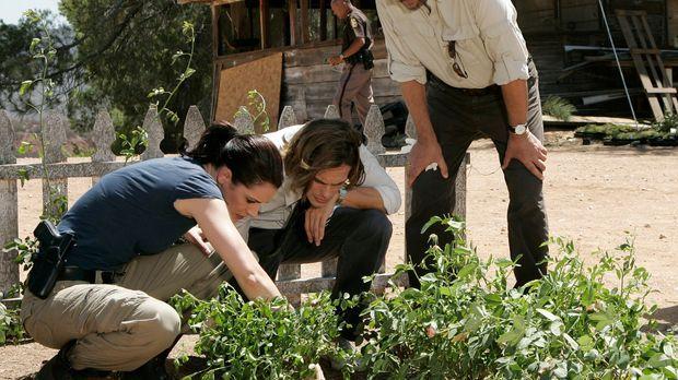 Gemeinsam mit ihrem Team versuchen Prentiss (Paget Brewster, l.), Reid (Matth...