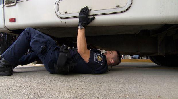Die Beamten an der kanadischen Grenze haben tagtäglich alle Hände voll zu tun...